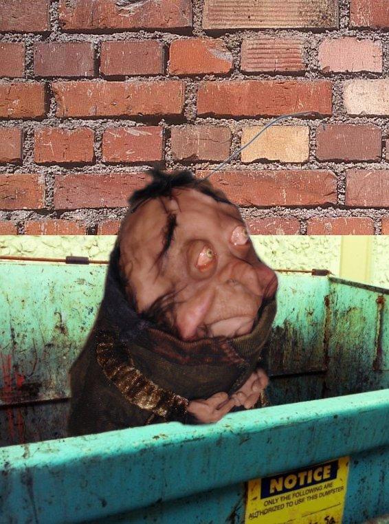 Roach Has a Tummy Ache B - Bledsoe