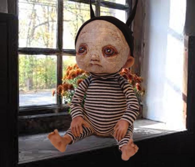 Petrie In Window - Bledsoe