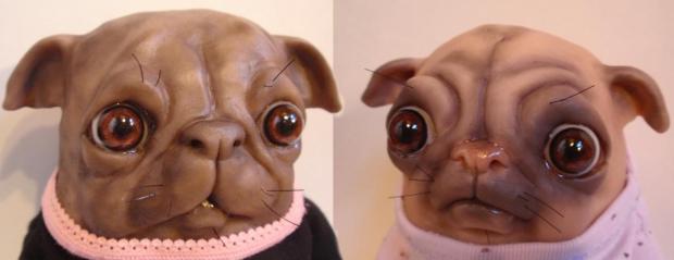 Pugs detail - Bledsoe