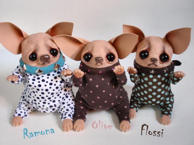 Chihuahuas - Bledsoe